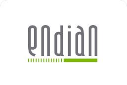 endian_logo